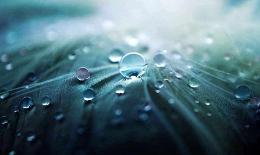 Trinkwasser – ein kostbares Gut